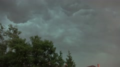 4k Thunderstorm with strong moving trees city backstreet Stock Footage