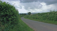 Country lane lush green hedgerow 1 Stock Footage