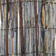 Stock Photo of Abstract view of rotten reeds
