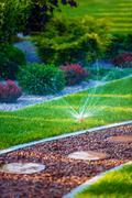 Backyard Garden Automatic Watering System. Stock Photos