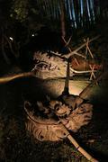 Fall season of kodaiji night Stock Photos