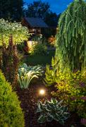 Backyard Garden Illumination. - stock photo