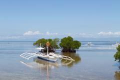 Outrigger Boat Anchored in Shallows of Mangroves Stock Photos