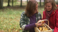 Mother and daughter picking mushrooms, Sweden. Stock Footage