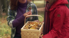 Mother, daughter and mushrooms, Sweden. Stock Footage