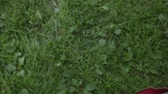 An elderly man resting on the grass, Sweden. Stock Footage