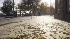 A young female student walking in autumn, Stockholm, Sweden. Stock Footage