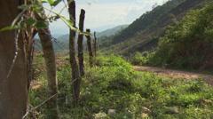 South American Men on mules, Honduras Stock Footage