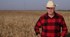 Confident Farmer Stay Straight Looking Camera Wheat Field Culture Food Industry Stock Footage