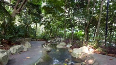 4k Ultra HD video of Singapore Botanic Gardens Stock Footage