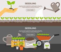 Seedling Banner Set - stock illustration