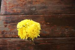 Yellow flowers on wood background Stock Photos