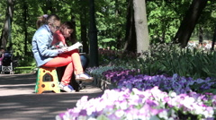 Artists draw on the city street. St. Petersburg. Russia. 2015 Stock Footage