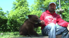 Man with a bear cub. St. Petersburg. Russia.2015 Stock Footage