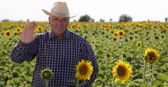 Sunflower Cultivation Farmland Owner Smiling Agronomist Business Man Saluting Stock Footage
