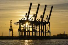 Port cranes in sunset Burchardkai container terminal Port of Hamburg Hamburg Stock Photos