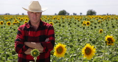 Business Farmer Man Sunflower Harvest Proud Owner Confident TV Presentation Stock Footage