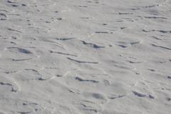 Wind blown snow on the ground Eastern Townships South Stukely Quebec Canada Stock Photos