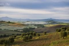 Stock Photo of Landscape with hills morning light UNESCO World Heritage Site Val d'Orcia near