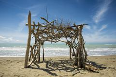 Driftwood construction natural beach in Albarese Natural Park of Maremma at - stock photo