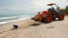 Beach cleaner remove wood branches from sea shore, parallax shot Stock Footage