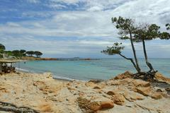 Beach Palombaggia Bay Chiappa Peninsula near Porto Vecchio Departement - stock photo