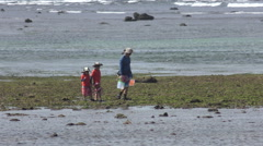 Children search for shells on The Beach 4K Stock Footage