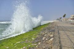 Stock Photo of Surf at the corniche of Salalah during the monsoon season or Khareef season