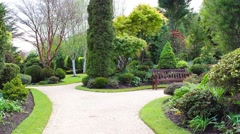Beautiful conifer garden in springtime, footage Stock Footage