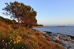 Coast in the evening light Cape Kamenjak Premantura Istria Croatia Europe Stock Photos