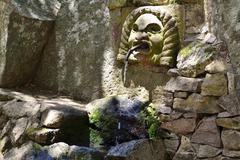Water spouting head of a source on the Monte Ortobene Nuoro Province of Nuoro - stock photo