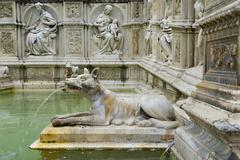 She wolf spouting water in the Fonte Gaia fountain Piazza del Campo Siena - stock photo
