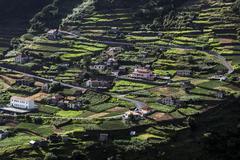 Stock Photo of Terraced fields and houses Ribeira de Janela Madeira Portugal Europe