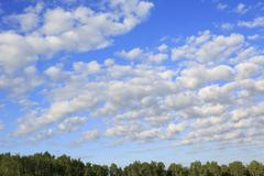 Beautiful cumulus cirrus clouds over forest Stock Photos