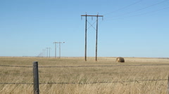 Wooden electrical poles in the prairies. Alberta, Canada. Stock Footage