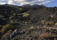 Track through the volcanic landscape with typical vegetation the volcanoes de - stock photo