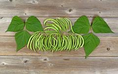 Organized green beans and leaves on rustic wooden boards - stock photo