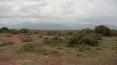 Dry drought savannah, Kenya, Africa, pan left Stock Footage