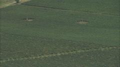 AERIAL France-Vinyards - stock footage