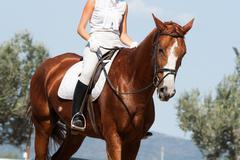 Equitation - stock photo