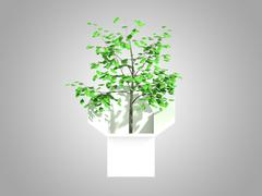 A tree growing from a white cardboard box - stock illustration