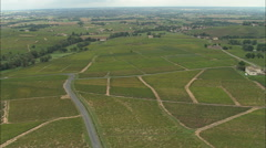 AERIAL France-Brouilly Vineyards Stock Footage