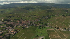 AERIAL France-Vineyards And Chateau De Bellevue Stock Footage