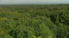 AERIAL France-Low Flight Over Woods South Of Demigny Stock Footage