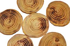 Stock Photo of Wood slices