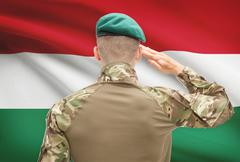 Soldier in hat facing national flag series - Hungary Stock Photos