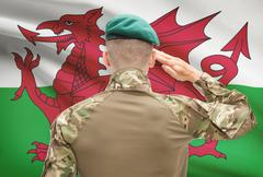 Soldier in hat facing national flag series - Wales Stock Photos