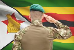 Soldier in hat facing national flag series - Zimbabwe Stock Photos