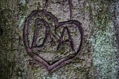 Heart carved in tree initials in a heart vow of love - stock photo