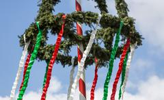 Maypole erected by the volunteers fire department Orsoy North RhineWestphalia - stock photo
